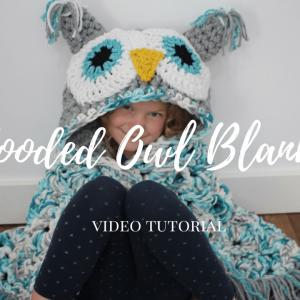 hooded owl video