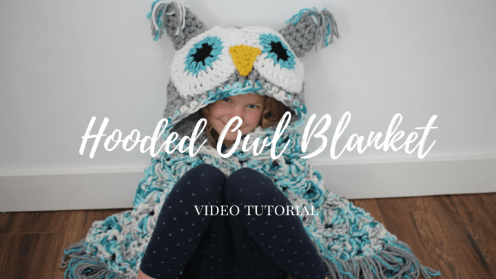 hooded owl video