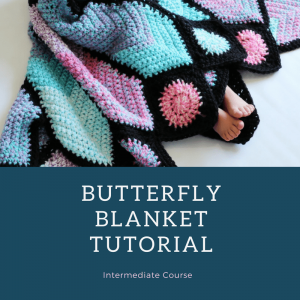 butterfly video course