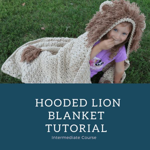 lion blanket course