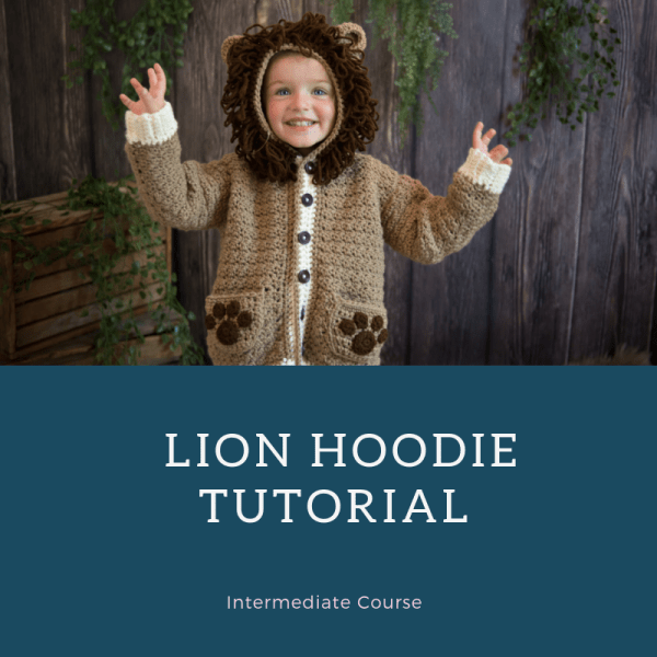 lion hoodie course
