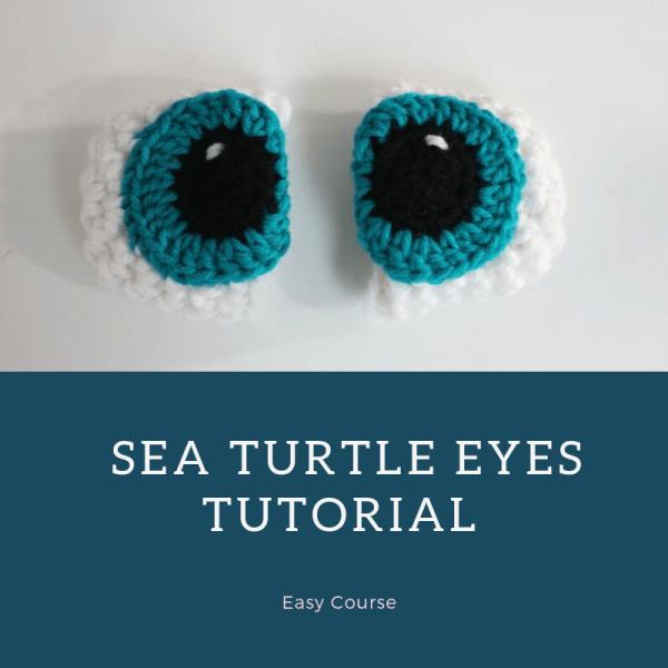 eyes course