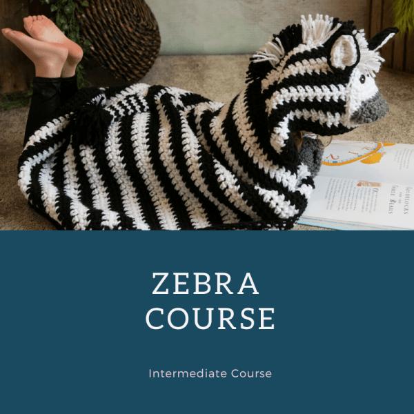 zebra course