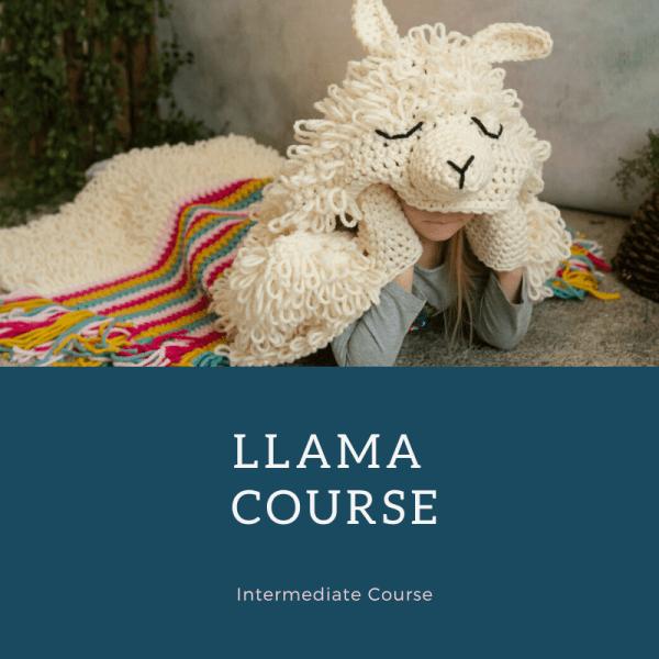 llama course