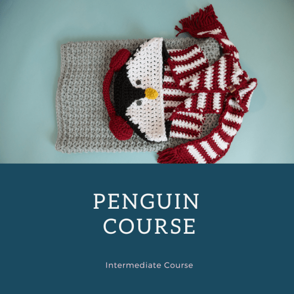 penguin course