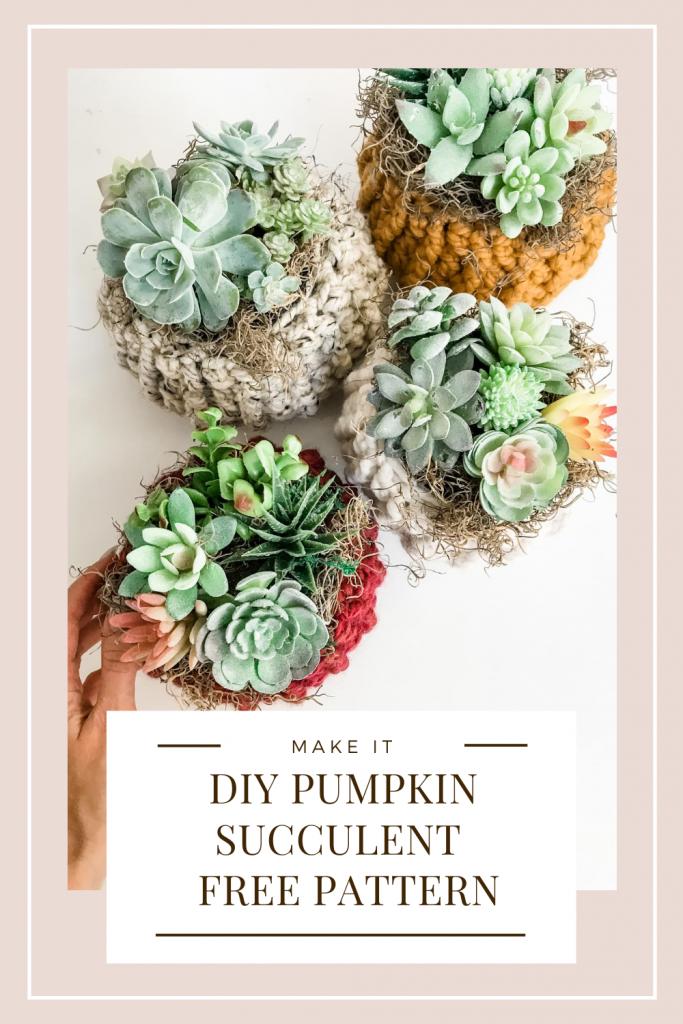 DIY Succulent Pumpkin Cozy