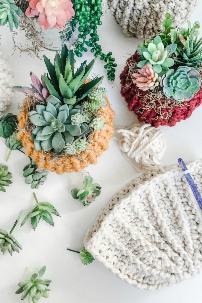 Easy DIY Succulent Pumpkin Cozy